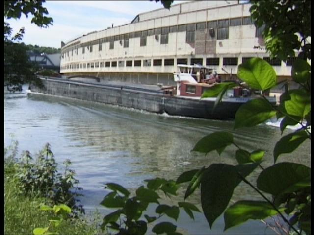 Un jardin ouvrier sur un île de la Seine