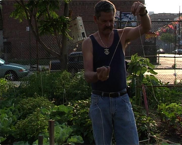 Jardinier portoricain